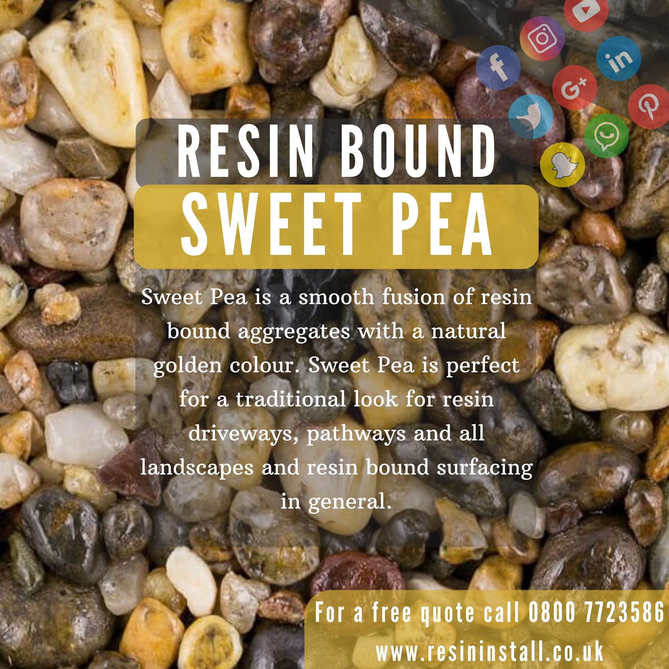 Sweet Pea-resin-bound